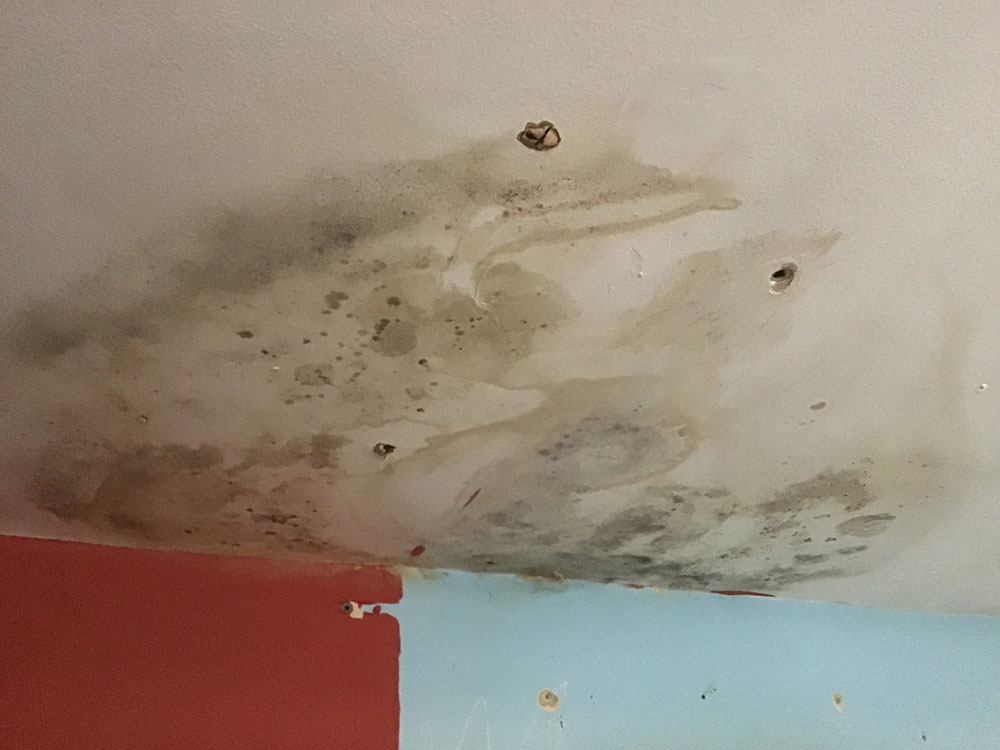 Mould growth on a domestic ceiling, requiring remediation and advice on how to prevent reoccurrence