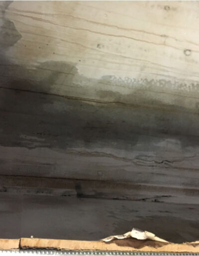 Severe moisture and mould to plasterboard
